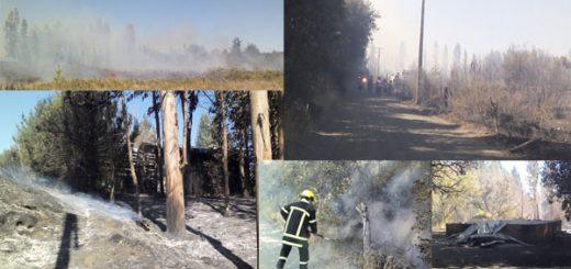 Incendio forestal consume iglesia evangélica, casa, y genera pánico en vecinos de Camino el Olivo