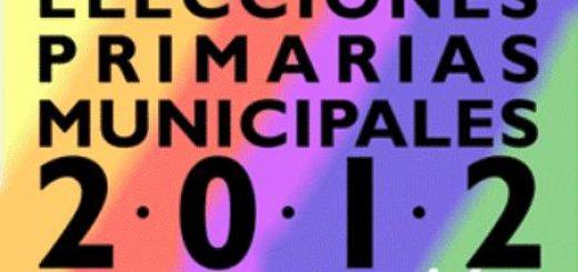 En 5 comunas de la provincia de Bio Bío se llevó a cabo esta interesante jornada democrática