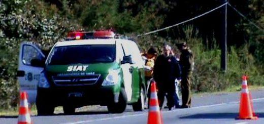 Adulto mayor muere atropellado en ruta 5, tercera victima fatal por este tipo de accidentes