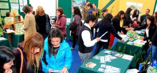 Con éxito se realizó VIII Feria de la Salud organizada por Universidad Santo Tomás