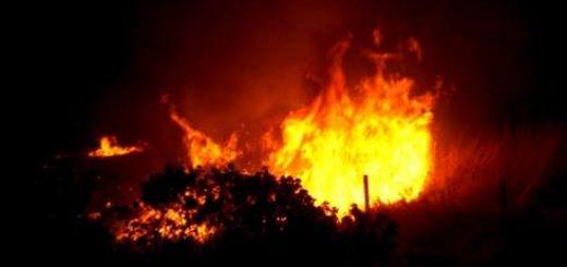 Bomberos debió combatir incendio aparente intencional de pastizales en sector sur