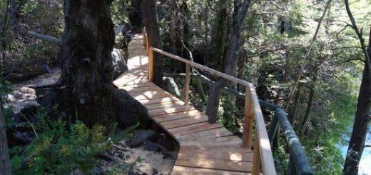 Parque Nacional Laguna del Laja celebra 55 años llevando a cabo mejoras en senderos y entorno
