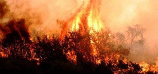 Mega incendio de Quillón: 13 años de cárcel pretende la Fiscalía para acusado