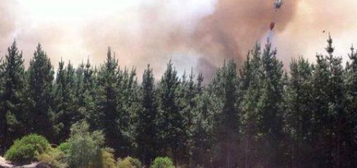 ONEMI declara esta tarde Alerta Roja para toda la Región del Bío-Bío por incendios en Florida y Laja