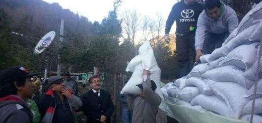 Entregan mercadería a familias del sector Pitril, además de forraje para animales tras frentes de mal tiempo