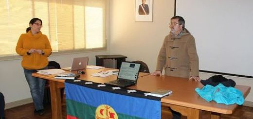 Gobernador Barceló y Seremi de Agricultura entregarán forraje a comunidades de Alto Biobío