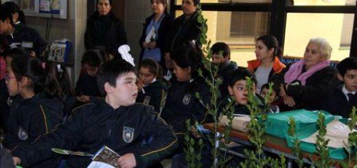 CESFAM de Los Ángeles y entidades colaboradoras celebran el Día Mundial del Medioambiente