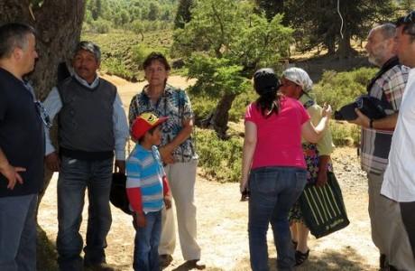 Directivo del Servicio de Salud Bío-Bío participa de las veranadas cordilleranas en comunidades Pehuenches