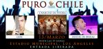 Puro Chile 2015 / Los Ángeles / Gepe / Chancho en Piedra / Noche de Brujas
