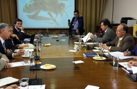 Comisión de Agricultura se reunió con Ministro Furche para analizar emergencias agrícolas