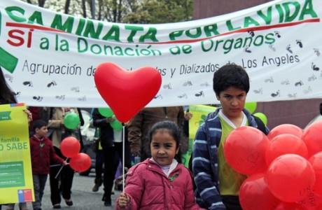 Día Nacional del Trasplante: Caminata por la vida en Los Ángeles
