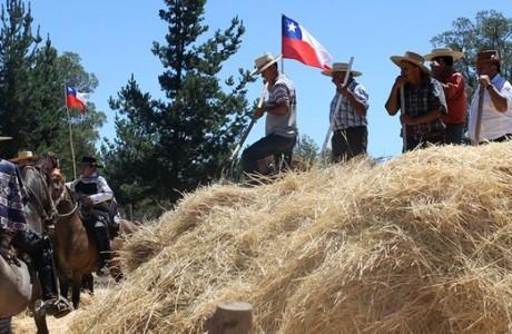 Trilla a Yegua Suelta en sector El Litre promete imperdible panorama familiar para este fin de semana