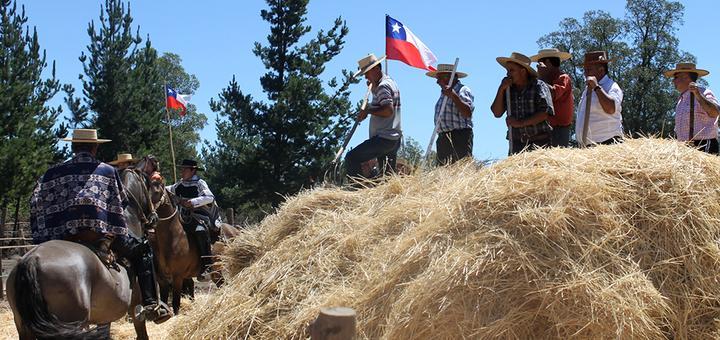 Trilla a Yegua Suelta en sector El Litre promete imperdible panorama familiar para este fin de semana / Los Ángeles