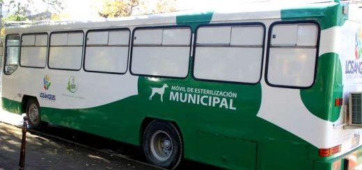 Inauguran primera clínica veterinaria móvil de la comuna