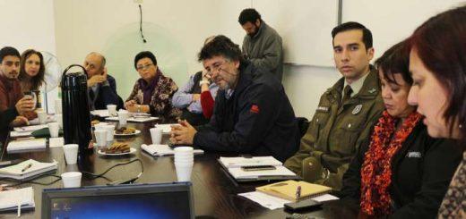 Mesa regional focalizará labor de erradicar el trabajo infantil en comunas de Coronel, Cañete y Los Ángeles