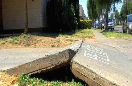 Más de $168 millones del Programa de Mejoramiento Urbano destinan a reposición de veredas