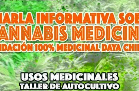 En Los Ángeles se desarrollará jornada sobre el uso medicinal de cannabis